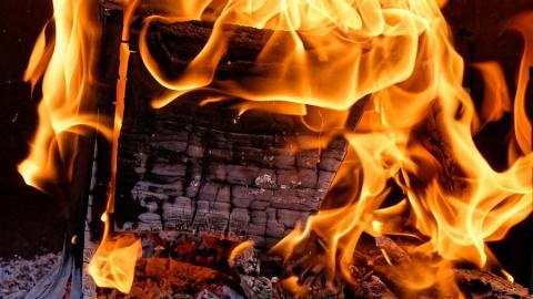Крупный пожар напугал жителей Дубков