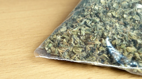 Росгвардейцы задержали мужчин с наркотиками в Балакове