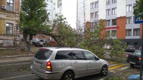 Шквалистый ветер в Саратове валит деревья на машины, провода и тротуары. Фото