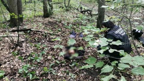 Жителя Балашовского района подозревают в убийстве родного брата