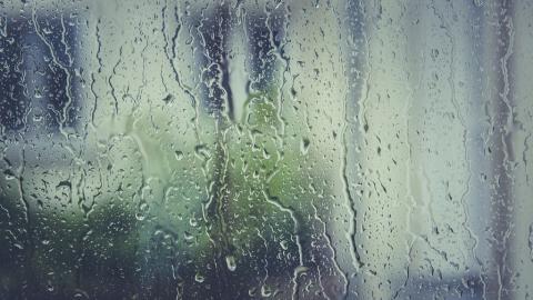 Сегодня в Саратовской области дождливо и ветрено
