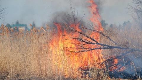 Отдыхавший на острове мужчина обгорел от костра
