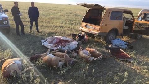 Пограничники задержали браконьеров рядом с государственной границей