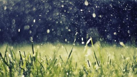 В Саратовскую область приходит похолодание с дождями
