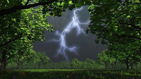 В Саратовской области будет дождливо и ветрено