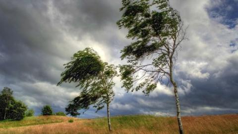 В последний рабочий день в регионе сохранится ветреная погода без дождей