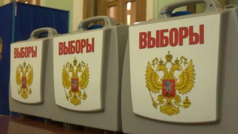 """Заявление о голосовании на дому можно подать через """"Госуслуги"""""""