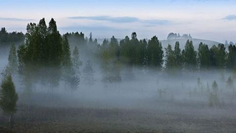 Сегодня утром возможны туманы