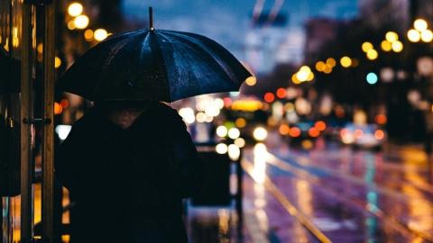 Синоптики предсказали дождливый день с сильными порывами ветра