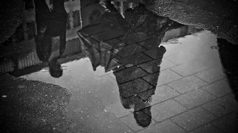 В Саратовской области весь день будет идти дождь с сильными порывами ветра