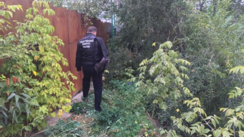 Подозреваемого в изнасиловании участкового врача арестовали