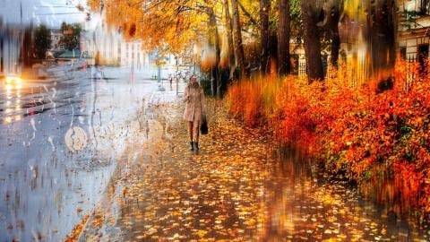 В Саратовской области сохранится ветреная и дождливая погода