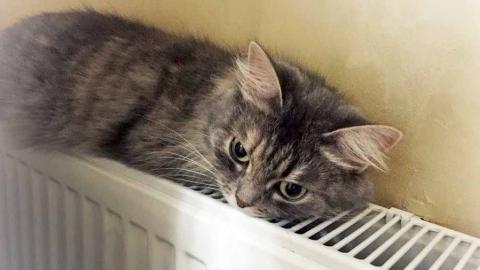 В Саратовской области начали включать отопление