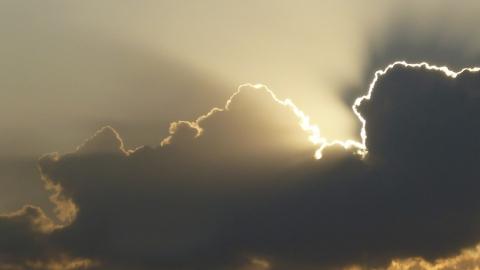 В Саратовской области - потепление и дожди
