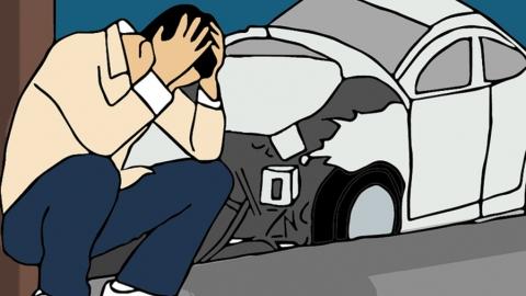 ГИБДД разыскивает водителей, сбивших человека и животное, а также повредивших чужие машины