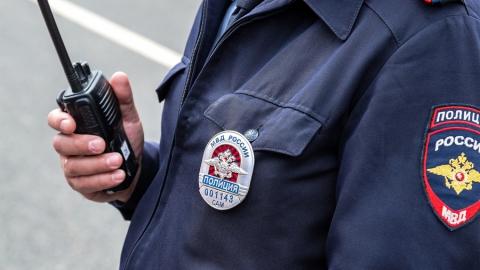 Полицейские хотят защиты от оскорблений в интернете
