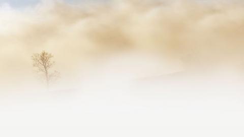 Утром водителей просят опасаться туманов, день будет теплым