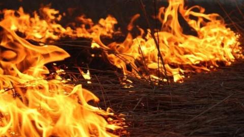 Десятки тонн сена и сгорели за сутки