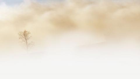 В Саратовской области обещают теплую погоду с небольшими дождями и туманами