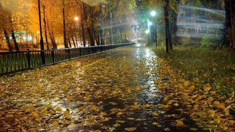 В Саратовской области будет облачно и дождливо