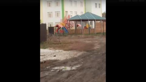 В Иволгино детям приходится ходить в садик через поле