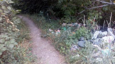 Саратовчанка пожаловалась на очередную опасную дорогу к школе