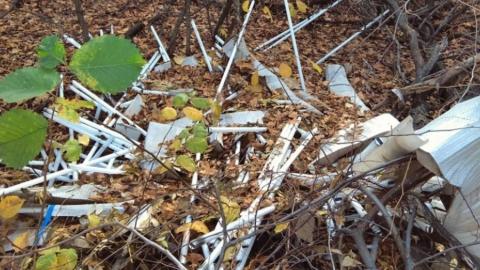 В окрестностях Балакова найдена свалка ртутных ламп