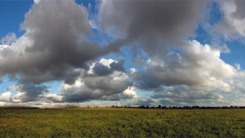 Неделя в Саратовской области начнется с теплой, сухой и облачной погоды