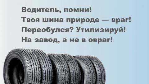 Регоператор: оставлять шины на площадках для ТКО нельзя