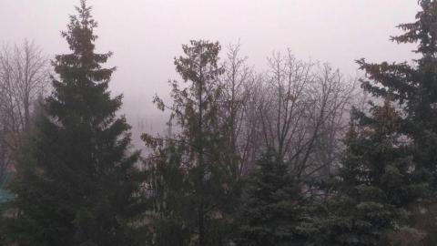 В Саратове и Энгельсе - сильный туман