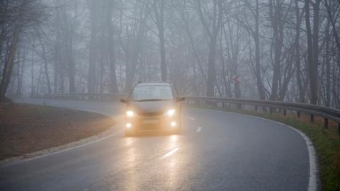 Накануне Дня автомобилистов водителей предупредили об опасности тумана
