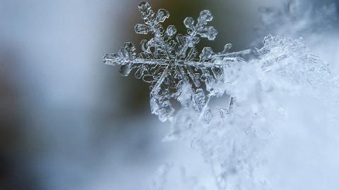 Уже на этой неделе в Саратове может выпасть снег