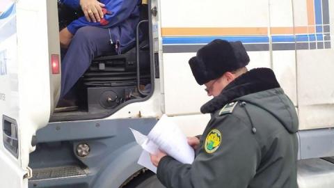 Саратовские таможенники продемонстрировали условия своей работы. Видео