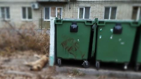 Саратовцев шокировала кровавая надпись на контейнере