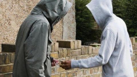 Двух жителей области подозревают в сбыте более полукилограмма героина