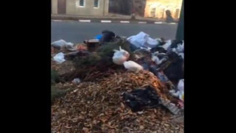 Энгельсская администрация прокомментировала ситуацию с мусором на улице Пушкина