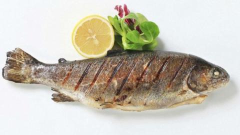 Саратовец пошел на разбой ради рыбы за 25 рублей