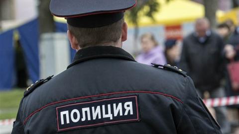 Обматерившему полицейского дали полгода