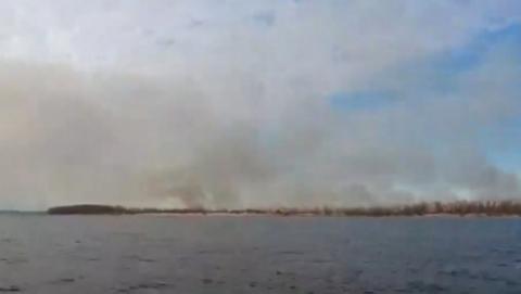 Виновник пожара на острове Пустынный не найден