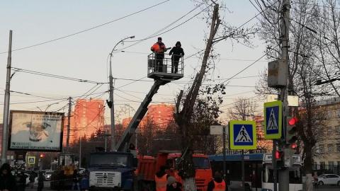 Коммунальщики с утра сносят деревья на Астраханской