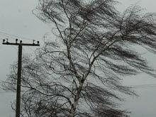 В Саратове ожидается гроза и сильный ветер
