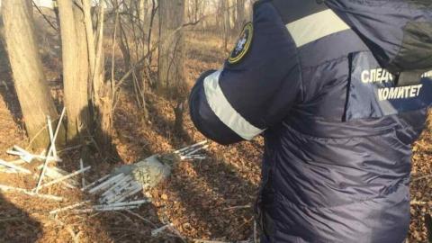 Возбуждено уголовное дело по свалке ртутных ламп в Балакове