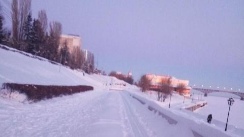 Благоустройство Саратова: дезинсекцию зеленых зон проводили зимой