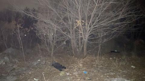 Житель Саратова нашел на пустыре человеческий череп