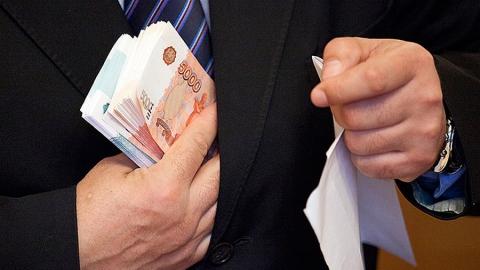 Лесничего задержали за взятку в 250 тысяч рублей