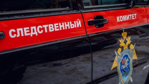 Вмерзшее в лед тело младенца найдено в Саратовской области