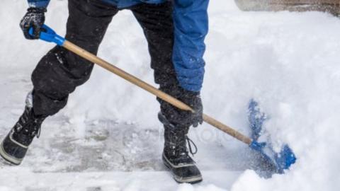Жилинспекция: тысяча шестьсот дворников вышли на борьбу со снегом
