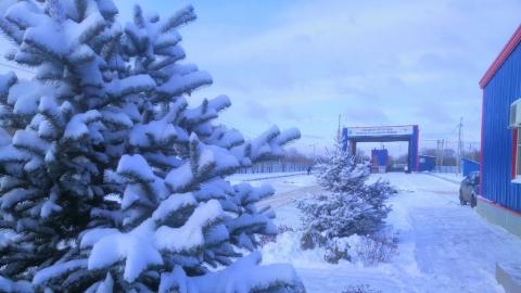 Регоператор: снегопад не повлиял на работу мусоровывозящих компаний