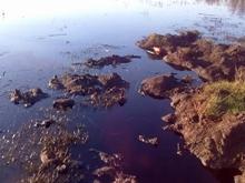С поверхности реки в Марксовском районе убирают нефтяное пятно