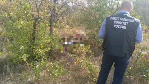 Жителя Вольска будут судить за изнасилование, удушение и кражу